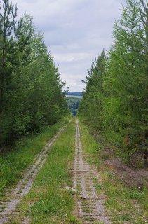 Ehemaliger Kolonnenweg direkt neben der Grenzlinie (Grenzwanderweg)
