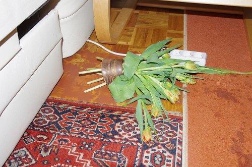 Der Hals der Vase hat sich noch nicht aufgelöst.