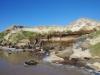 der angewehte Sand verstopft und verlandet die Flüsse, die deshalb als Sickerwasser ins Meer münden